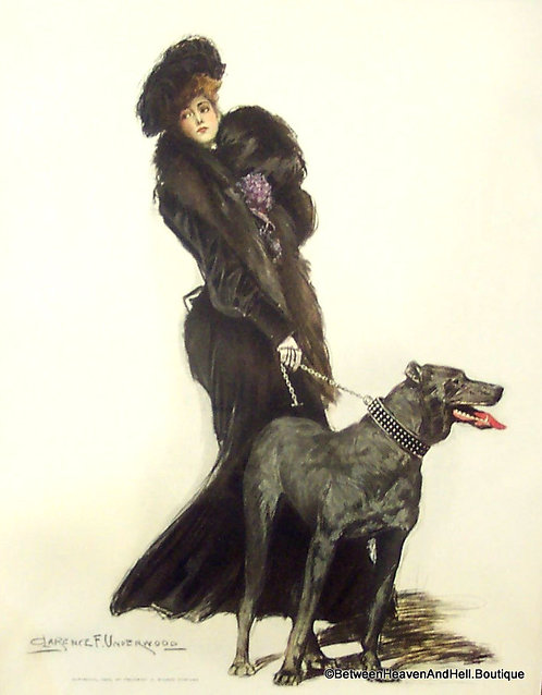 Victorian Woman 1903 Vintage Print: Dogs & Cats: Clarence Underwood, Great Dane