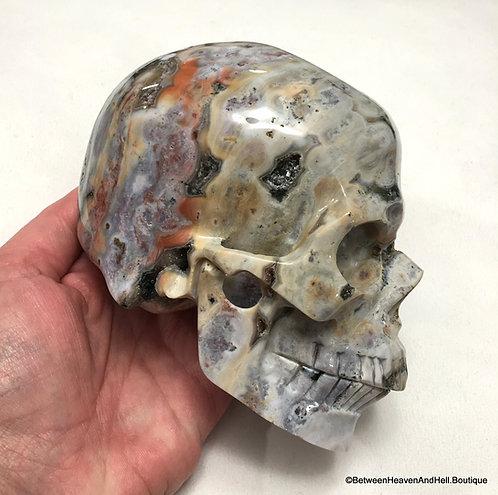 "5"" Large Druzy Ocean Jasper Skull, Atlantean Energy Soul Healing Karma Clearing"