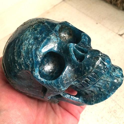 "Large 4"" Gemmy Blue Kyanite Crystal Skull - Chakra Healing, Automatic Writing"