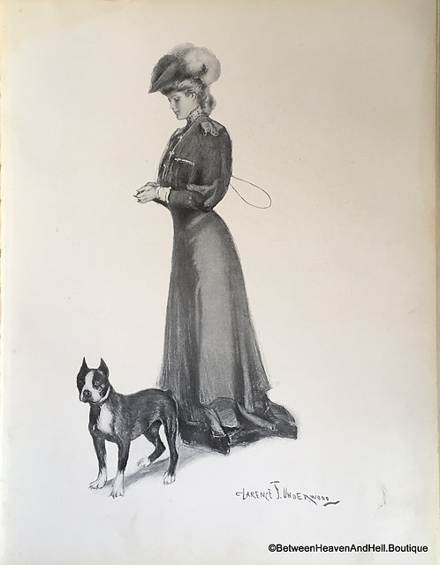 Early 1900's Vintage Dog Art Print Edwardian Lady & Boxer, Pointy Ears