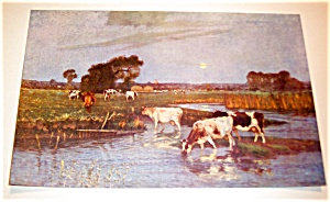 Farm & Country Scene Print: Cows In Field At Lake