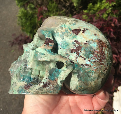 "5.1"" Large Activated Chrysocolla Crystal Skull - Malachite, Shattuckite, Cuprite"