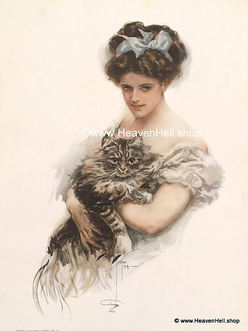 Antique Vintage Cat Kitten Prints Victorian Girl Maine Coon Cat Harrison Fisher