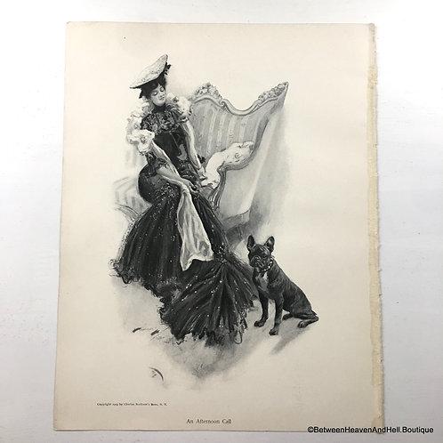 1903 Shabby Art Vintage Print French Bull Dog Victorian Woman