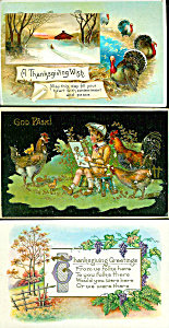 Embossed Antique Postcard Lot Of 3 Thanksgiving Day Turkey