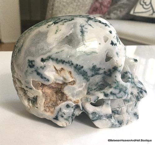"5.1"" LARGE Tree Agate Crystal Skull, Druzy Quartz Skull, Heaven & Earth Energy"