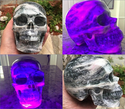 "Rare 5.1"" Large Sodalite Hackmanite Skull Fluorescent Mineral Good Luck 2.65LB"
