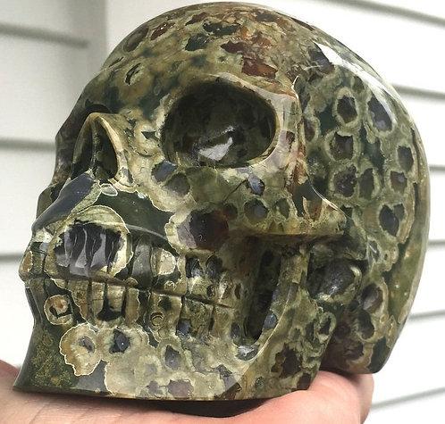 "5.2"" Large Activated Orbicular Rainforest Jasper Crystal Skull Quartz Energy"