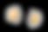 卵の殻.png