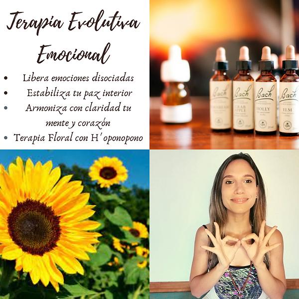 Terapia Emocional Evolutiva (3).png