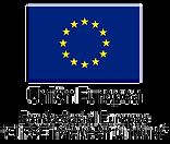 Fondo Social Europeo.png