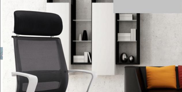 護脊健康辦公椅H126-1011