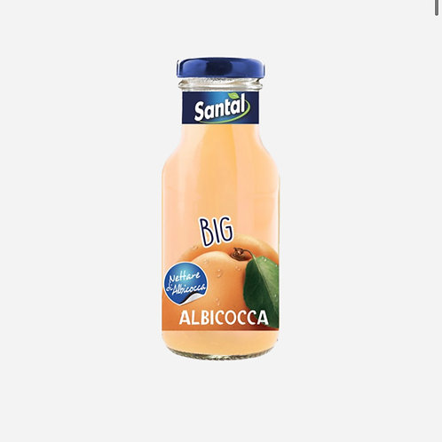 Apricot Juice Santal  250ml