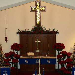 Our Beautiful Sanctuary