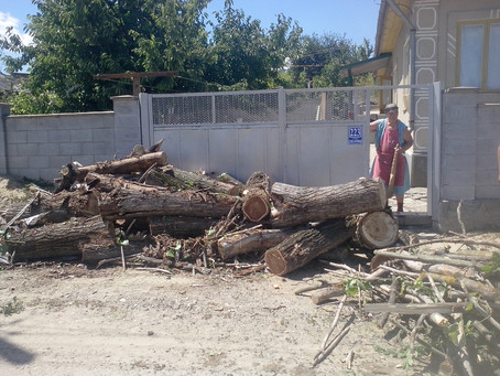 Примария предоставила дрова