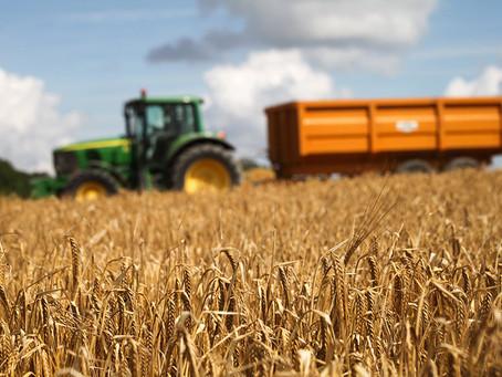 Для фермеров Молдовы объявлен новый конкурс на получение грантов