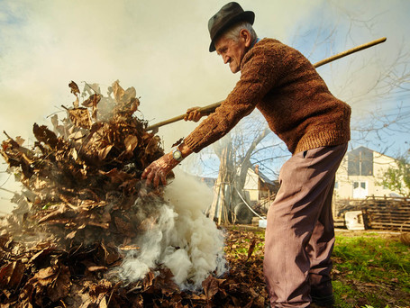 Вниманию жителей города Вулканешты: Власти напомнили о штрафах за сжигание листьев