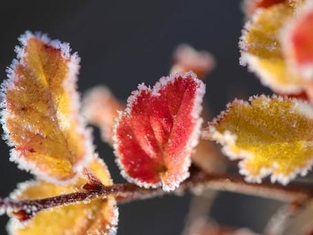 В Молдову идет похолодание: синоптики обещают первые заморозки
