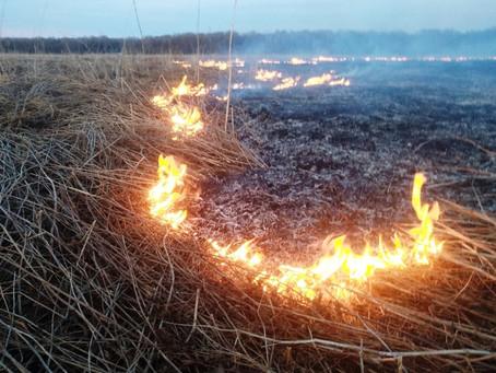 Правила пожарной безопасности в весенне - летний период