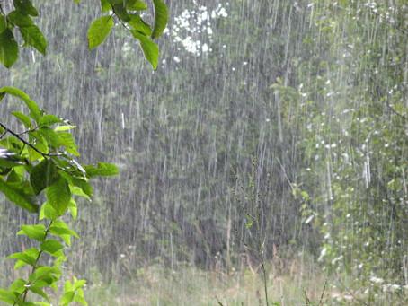 Синоптики рассказали, какая погода ожидает жителей Молдовы в пятницу