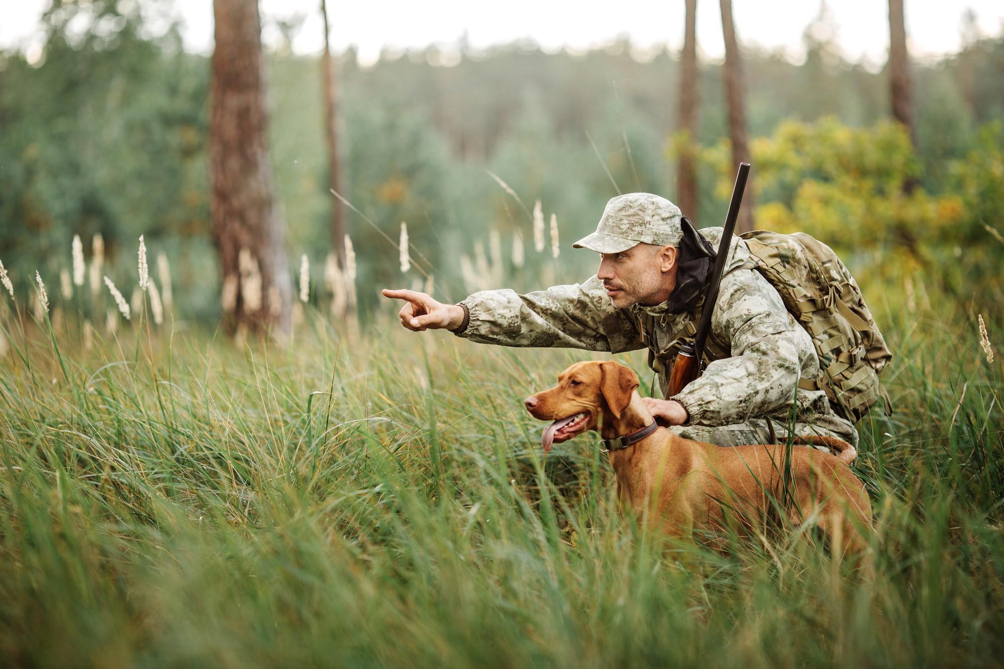 Hunt Expert - приманка для диких копытных животных в Сургуте