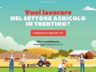 Vuoi lavorare nel settore agricolo?!