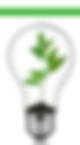 Bright Bulb Community Angela Nuttle