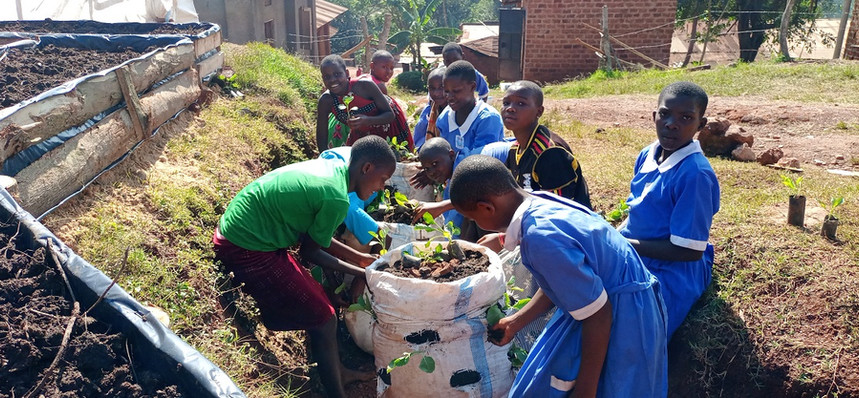 Besiania Primary school
