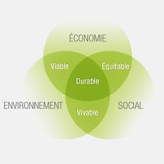 Développement durable, responsabilité sociétale entreprise, RSE, ESS, conseil, assistance, évènementiel, éco-conception, éco-communication, gestion, éco-gestion, management, management environnemental, management transversal, écologie, économie circulaire