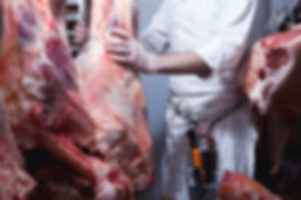 Boeuf boucher suspendu