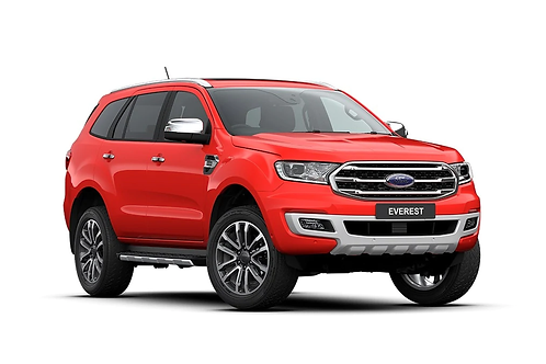 Ford Everest 3.2L DPF Performance & Efficiency System