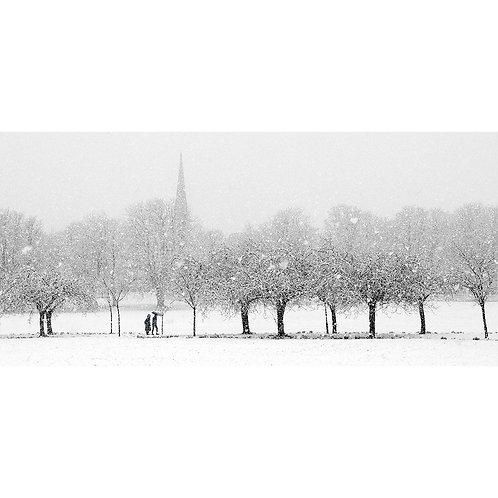 Snow Flurry - The Stray, Harrogate
