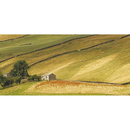 Bishopdale -The Yorkshire Dales