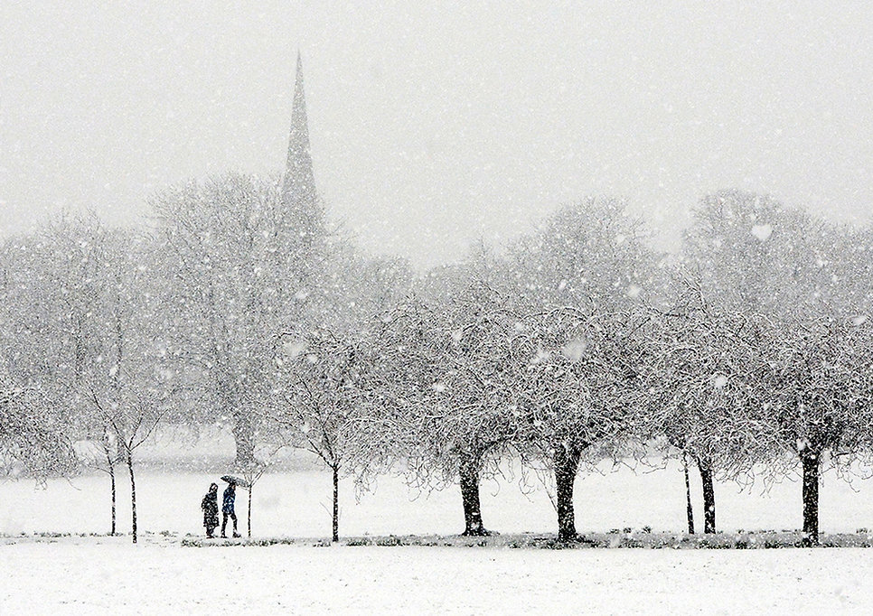 SnowFlurryLndWeb.jpg