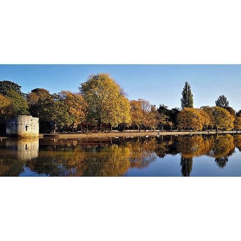 Autumn Colours. River Ouse, York.