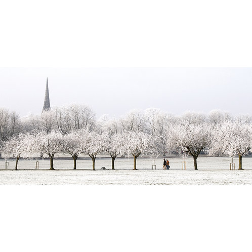 Rime Frost Walk - The Stray, Harrogate