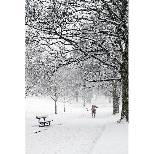 Montpellier Gardens in the snow Jigsaw