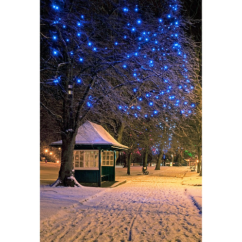 West Park Lights (Original) Jigsaw