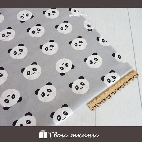 Панды на сером