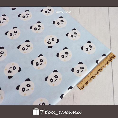 Панды на голубом