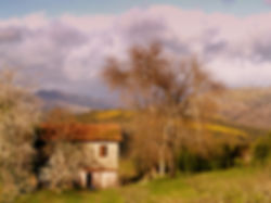 1935461_galicia_rural_20141122203728.JPG
