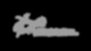 Logo_ir_veryser_gris.png