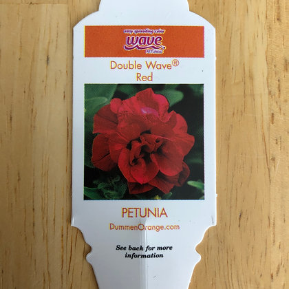 Petunia - Double Wave Red : 4 inch pot