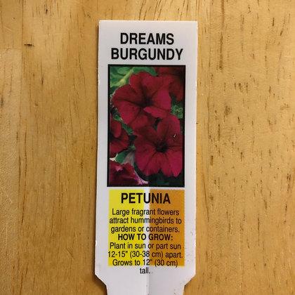 Petunia - Dreams Burgandy : 4 pack
