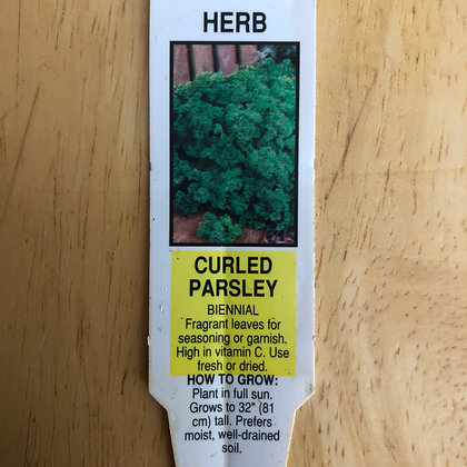 Parsley - Curled Parsley : 2 inch pot