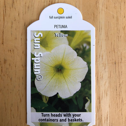 Petunia - Sun Spun Yellow : 4 inch pot