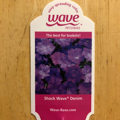 Wave Petunias - Shock Wave Denim : 6 pack