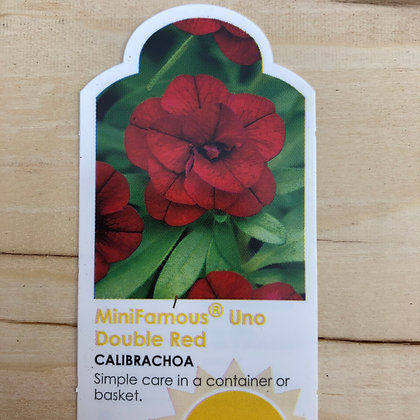 Calibrachoa - MiniFamous Uno Double Red : 4 inch pot
