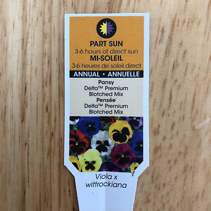 Pansy - Delta Premium Botched Mix : 4 pack