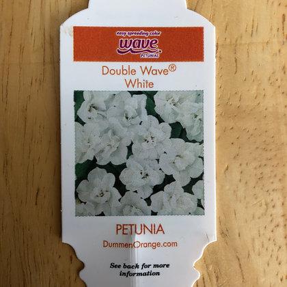 Petunia - Double Wave White : 4 inch pot